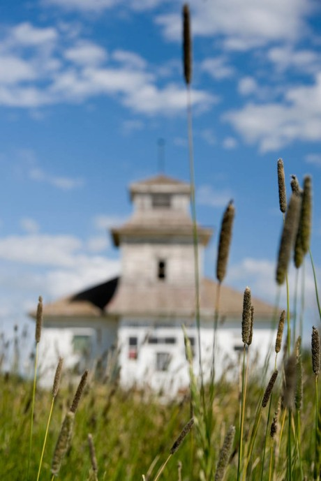 Same school house, this time with some grasses or something.