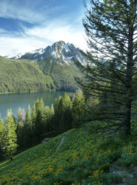 Evening light on the way home above Redfish Lake with Mount Mogul (9,733') behind. - Composite image