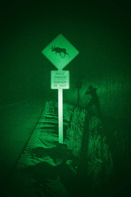 Night Danger found with the aid of night vision goggles.