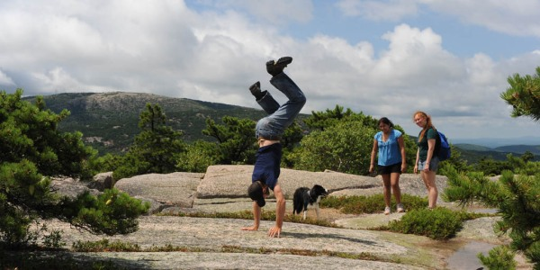 A similarly brief handstand on the summit of Champlain Mountain. I think the dog is confused. (Photo by Eugenia)