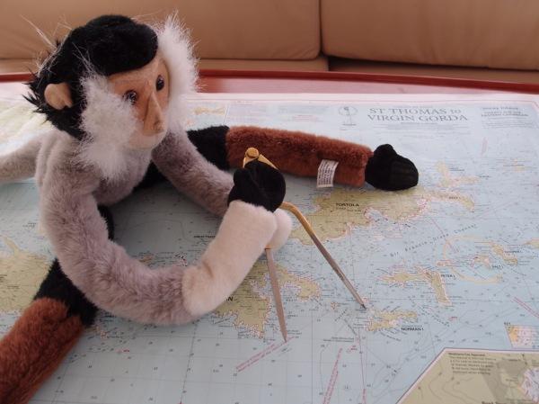 Captain Tristan plotting our course through paradise.