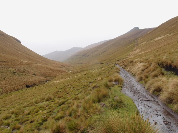 The Inca Trail leading away from Achupallas into the Rio Cadrul valley. Elevation here is about 11,500ft / 3,500m.