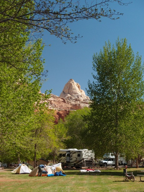 An oasis in the desert, the Fruita orchards and campground.