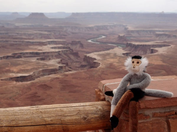 Tristan enjoys the view from the Green River Overlook in Canyonlands.