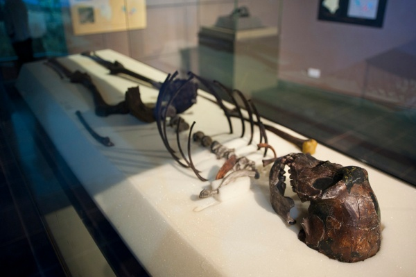 The 1.6 million year old Turkana or Nariokotome Boy is one of the oldest complete skeletons of an early hominin ever found. It was discovered in 1984 on the shores of Lake Turkana in Northern Kenya by paleontologist Kamoya Kimeu.
