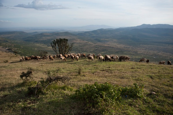 Looking into the Great Rift Valley while hiking in the Ngong Hills Nature Reserve.