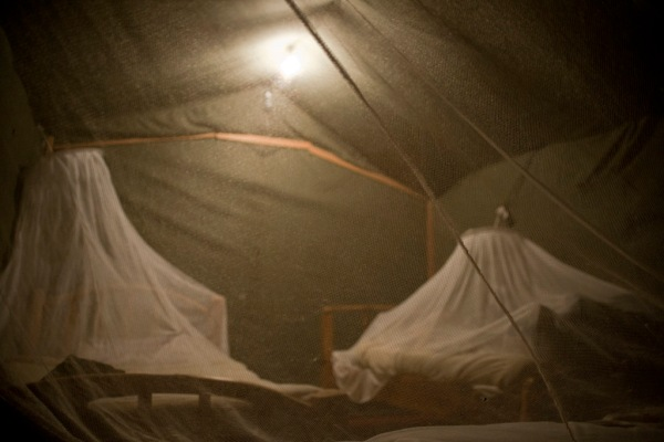 Eugenia, Gachanja, and I inside our mosquito net shrouded beds.