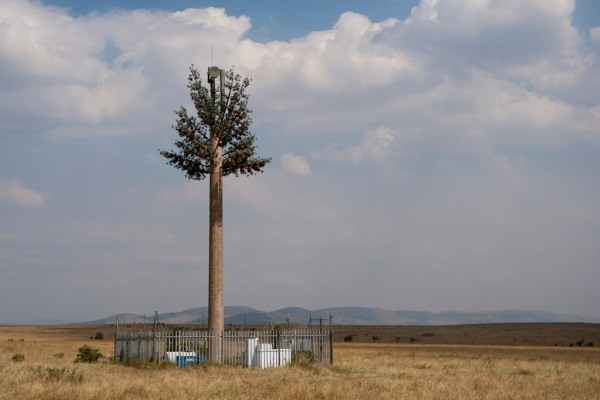 Cell phone towers in Kenya are disguised as comically as they are in the US.