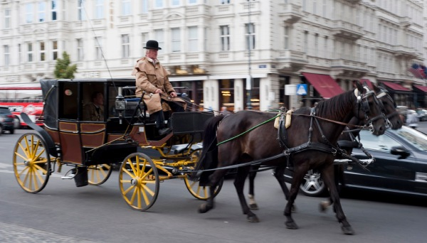 Carriage rides in downtown Vienna.